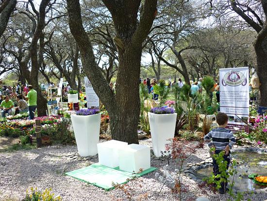 La pampa se abre camino dentro del sector flor cola for Gramineas ornamentales vivero