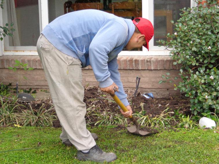 Paisajismo clientes insatisfechos for Trabajo jardinero