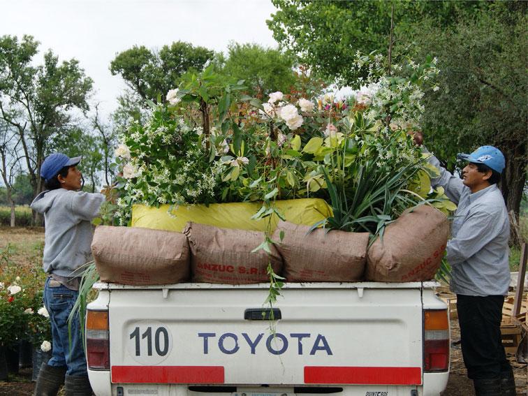 Suben un 35 los salarios for Sindicato jardineros