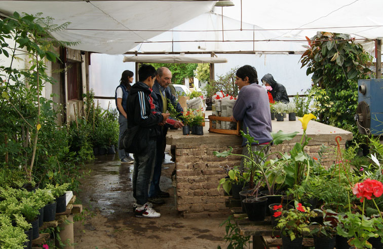 C rdoba proyectan una planta de compostaje for Viveros en cordoba