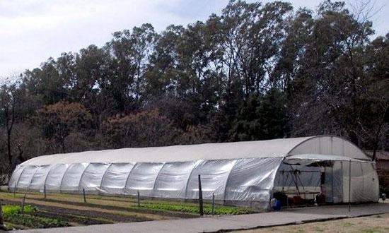 Floricultura jardiner a proyectos invernaderos for Materiales para un vivero