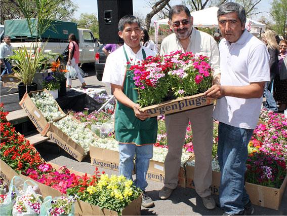 Autorizan a vender en la v a p blica for Gramineas ornamentales vivero