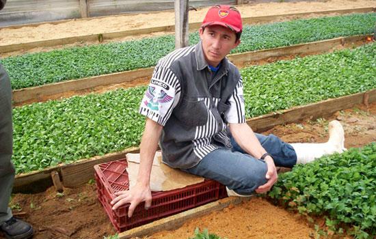 Econom a y viveros im genes de floricultura corrientes for Viveros en escobar