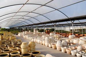 Actualidad flor cola c rdoba mesa flor cola font n for Plan de negocios de un vivero de plantas